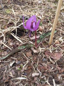 blog_2016_04_23_1.jpg