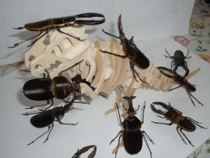 恐竜に群がるカブトムシとクワガタ