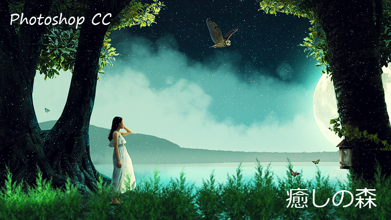 Photoshop CC 癒しの森
