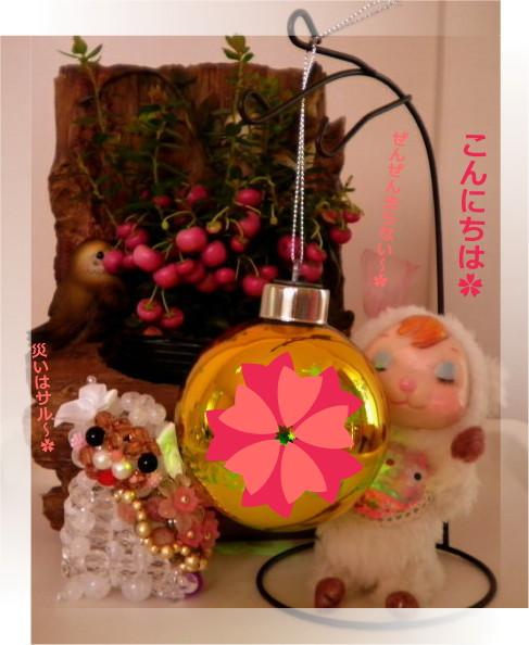 花ブ20160525-1