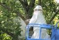 蜂の巣除去-9