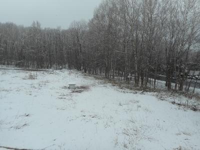 雪景色で大型連休入り