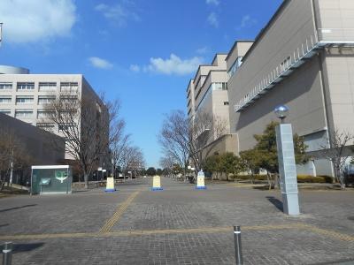 東京2016年1月