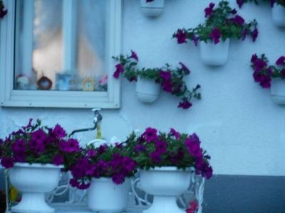 花で飾られた家