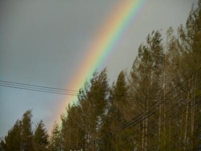 161009虹