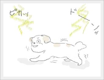 kaminarihohuku.jpg