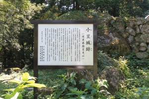 orisiroyama (24)