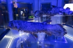 深海水族館5