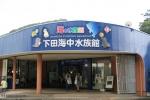 下田水族館7