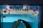 下田水族館4