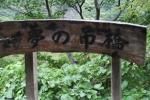 夢の吊橋4