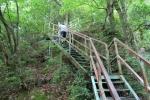 夢の吊橋12