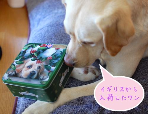 エンボス加工ティン缶box入りビスケット3