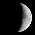 月齢06.5