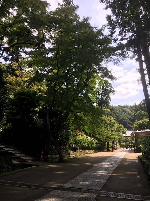 円覚寺90