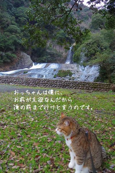 竜門の滝4