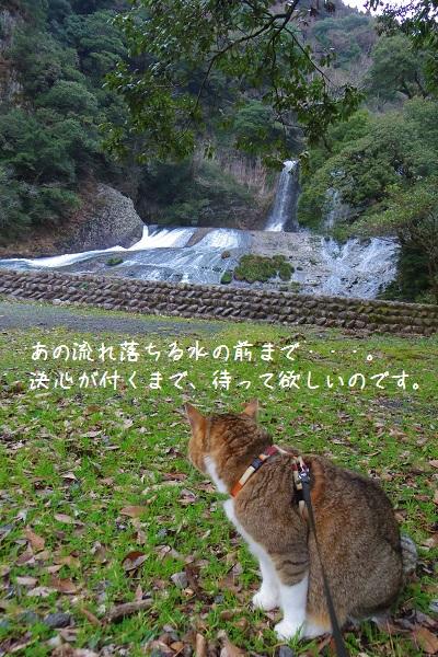 竜門の滝6