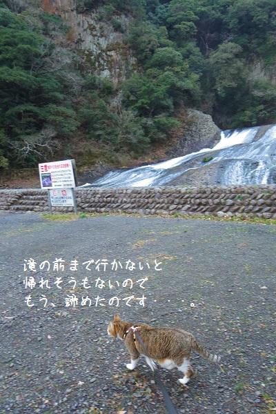 竜門の滝7