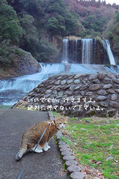 竜門の滝8