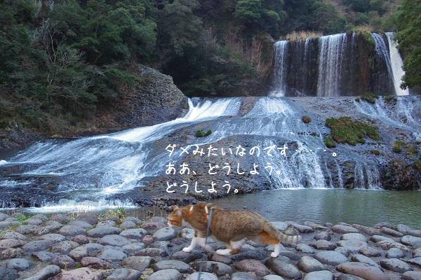 竜門の滝10