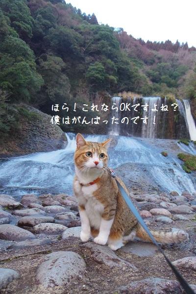 竜門の滝11