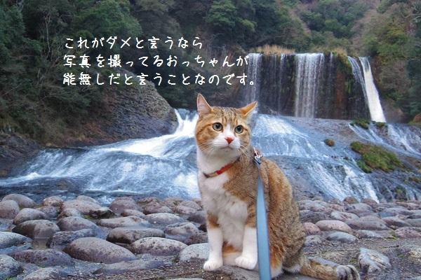竜門の滝12