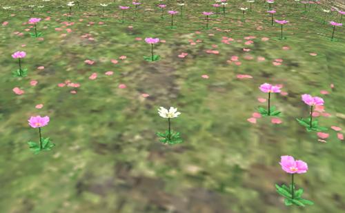 小花が沢山咲いています