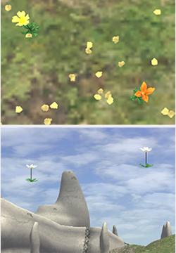 (上)オレンジの花 (下)浮き花