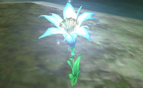 唯一残った花が意味するのは