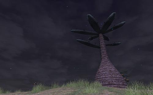 夜の星降る丘、実際に見て欲しい