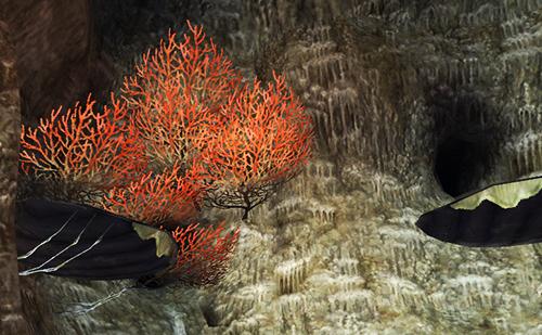 コロロカの洞門です
