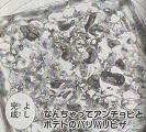 なんちゃってアンチョビとポテトのパリパリピザ図
