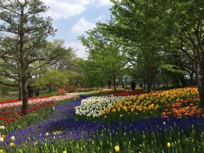 あずみの公園4