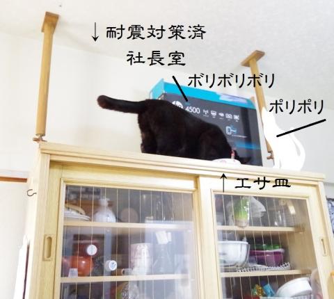 きなみちゃんの社長室