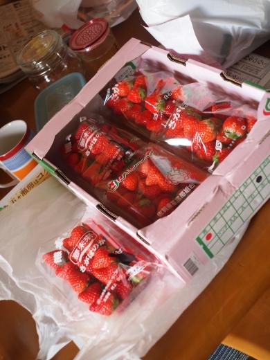 佐賀産、熊本産のイチゴ 品種は、さがほのか