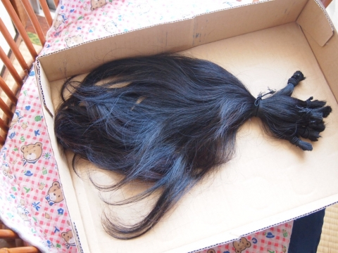 ヘアドネーション 髪の毛