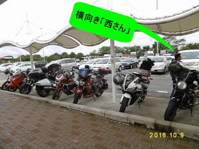 P1070335.jpg