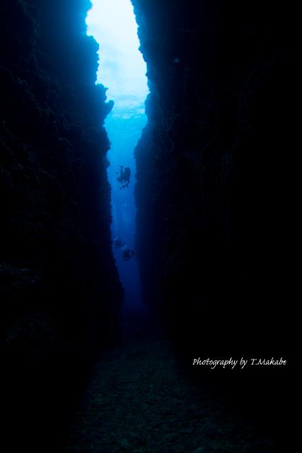 慶良間「中瀬」の地形