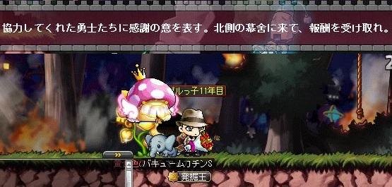 Maple14610a.jpg