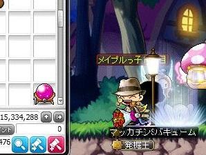 Maple14651a.jpg