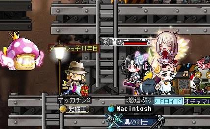 Maple14672a.jpg