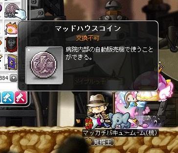 Maple14679a.jpg