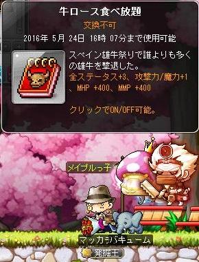 Maple14692a.jpg