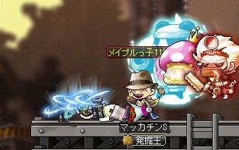 Maple14699a.jpg