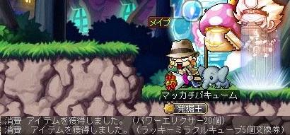 Maple14762a.jpg
