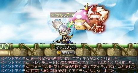 Maple14820a.jpg
