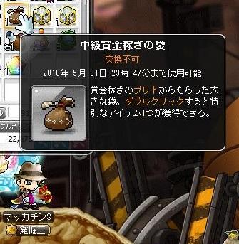 Maple14885a.jpg