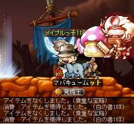 Maple14902a.jpg