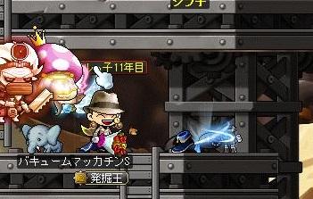 Maple14973a.jpg