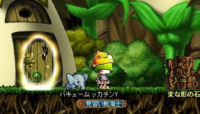 Maple15092a.jpg